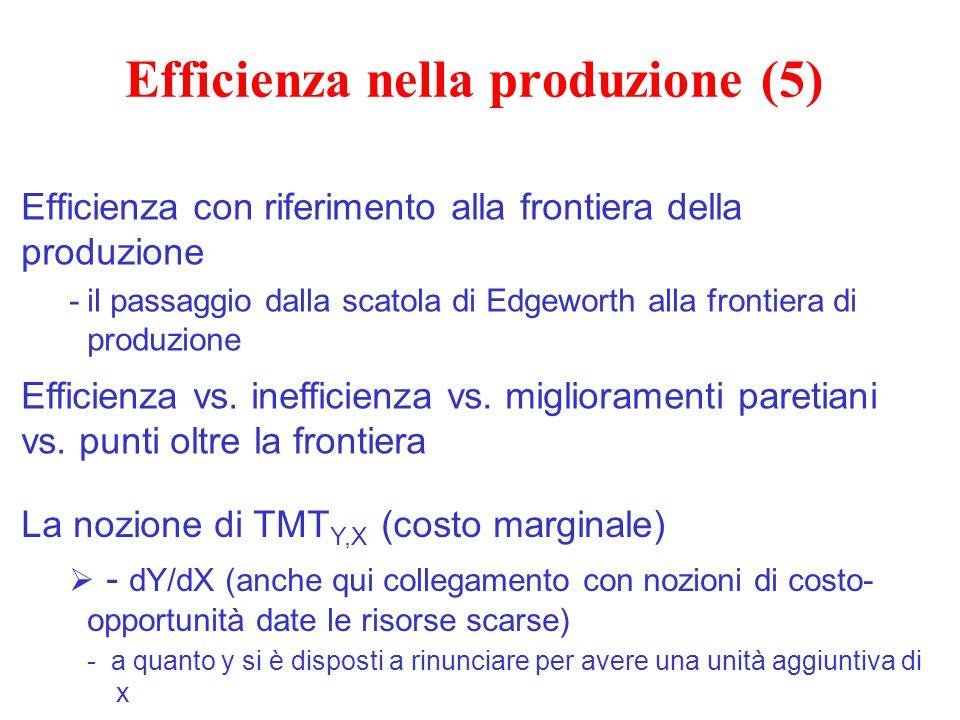 Efficienza nella produzione (5)
