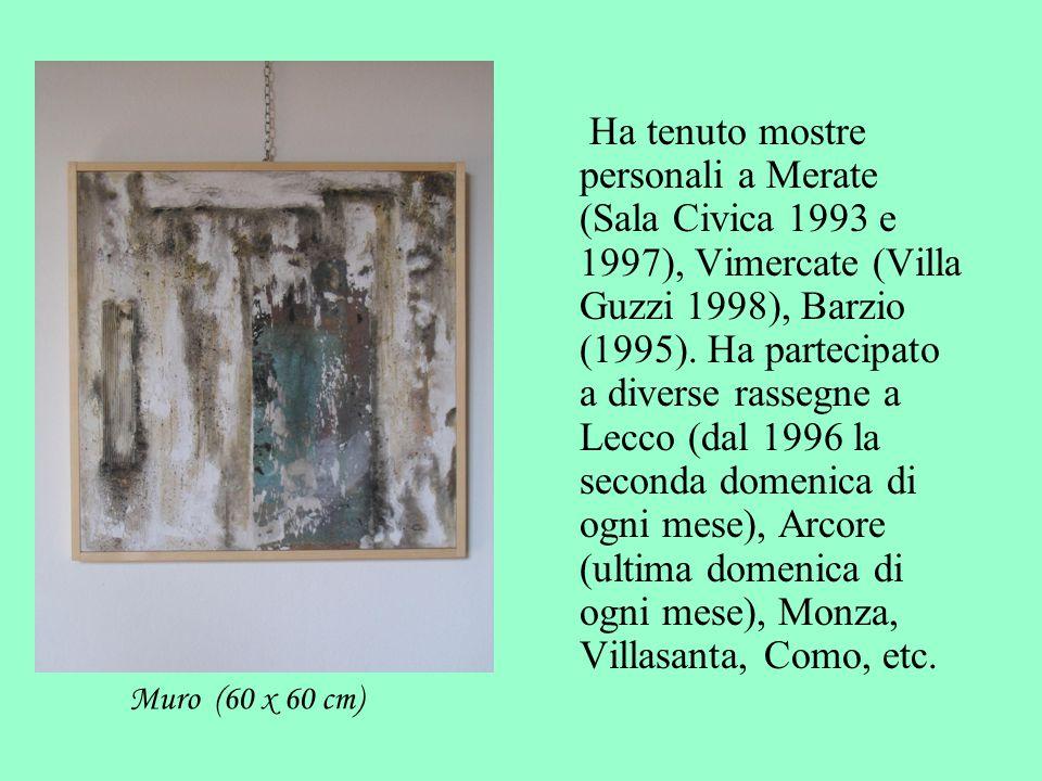 Ha tenuto mostre personali a Merate (Sala Civica 1993 e 1997), Vimercate (Villa Guzzi 1998), Barzio (1995). Ha partecipato a diverse rassegne a Lecco (dal 1996 la seconda domenica di ogni mese), Arcore (ultima domenica di ogni mese), Monza, Villasanta, Como, etc.