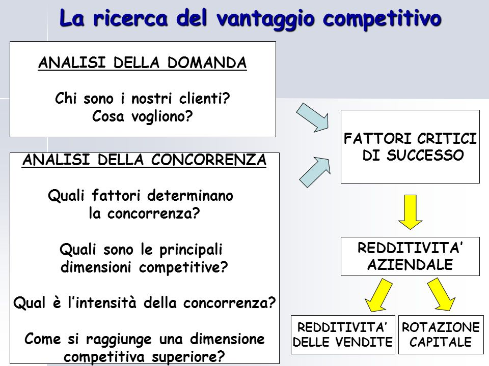 La ricerca del vantaggio competitivo