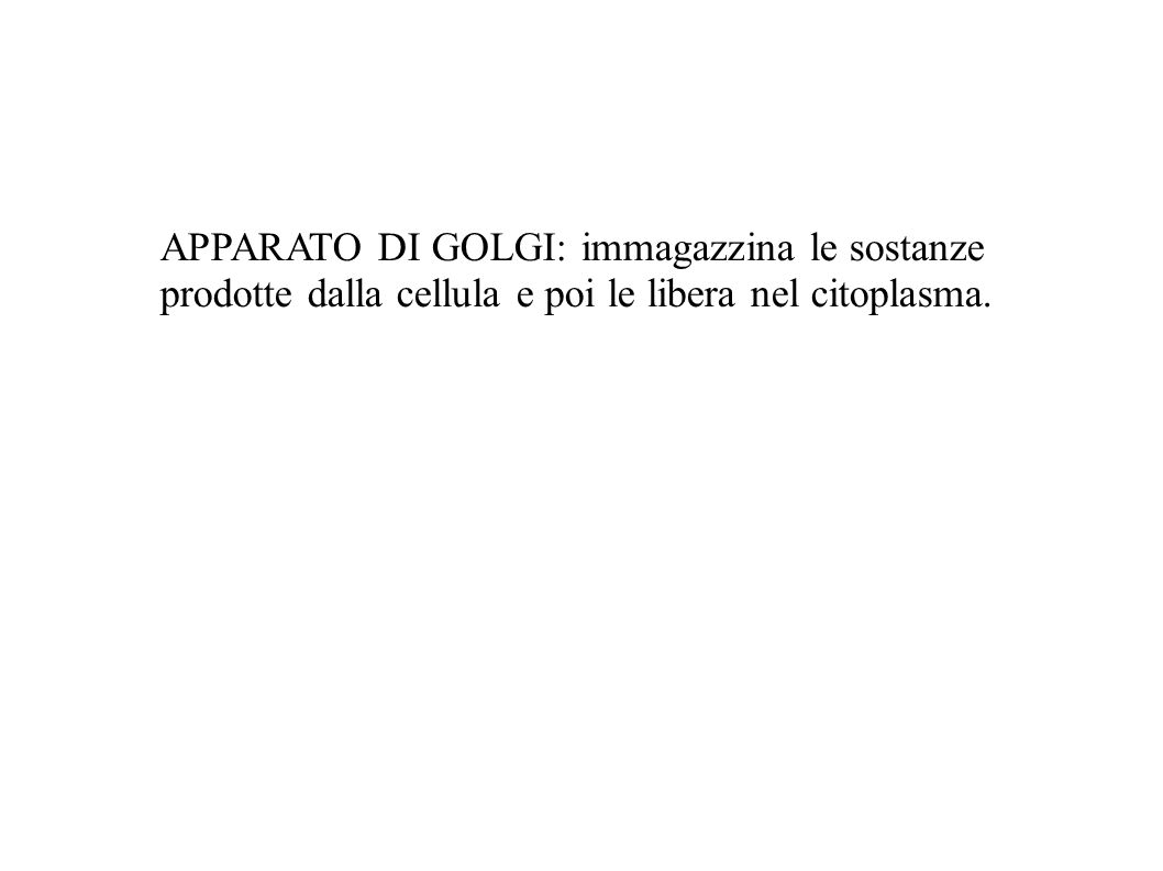 APPARATO DI GOLGI: immagazzina le sostanze prodotte dalla cellula e poi le libera nel citoplasma.