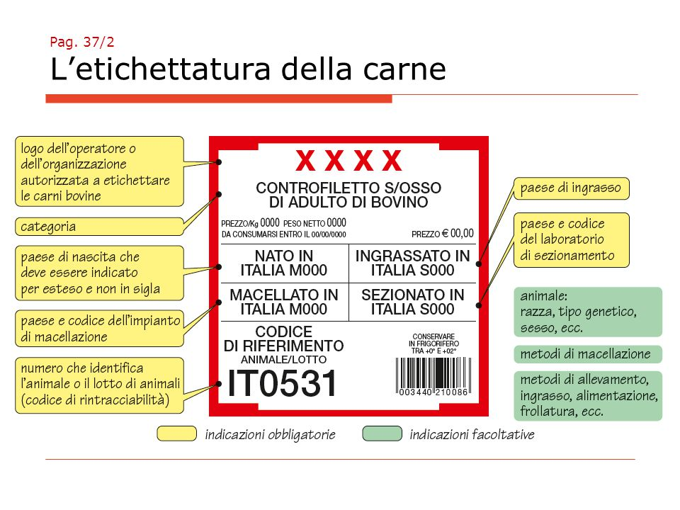 Pag. 37/2 L'etichettatura della carne