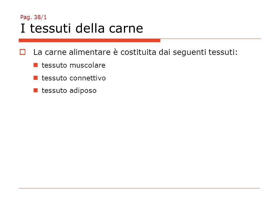 Pag. 38/1 I tessuti della carne