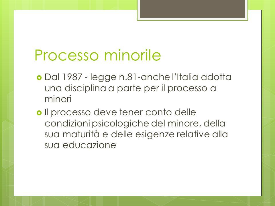 Processo minorile Dal 1987 - legge n.81-anche l'Italia adotta una disciplina a parte per il processo a minori.