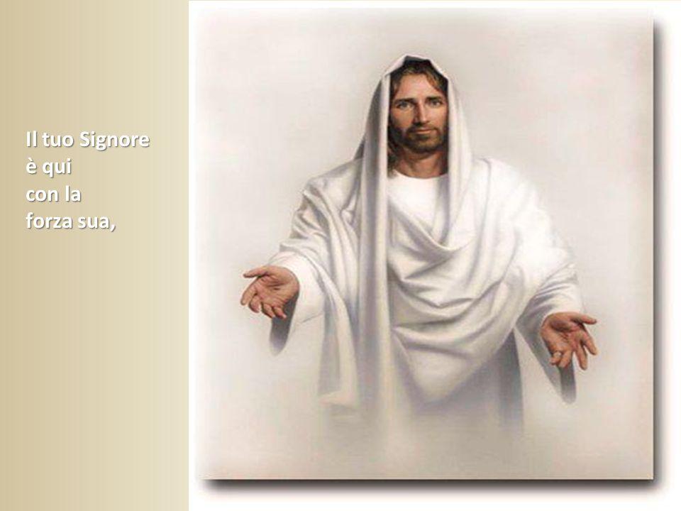 Il tuo Signore è qui con la forza sua,