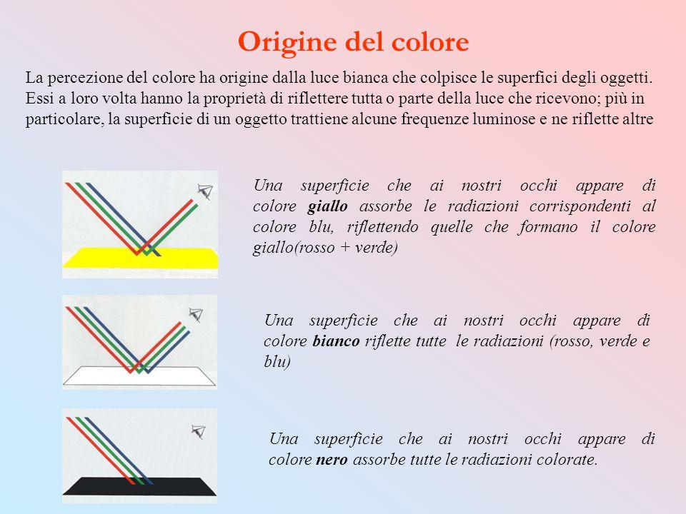 Origine del colore