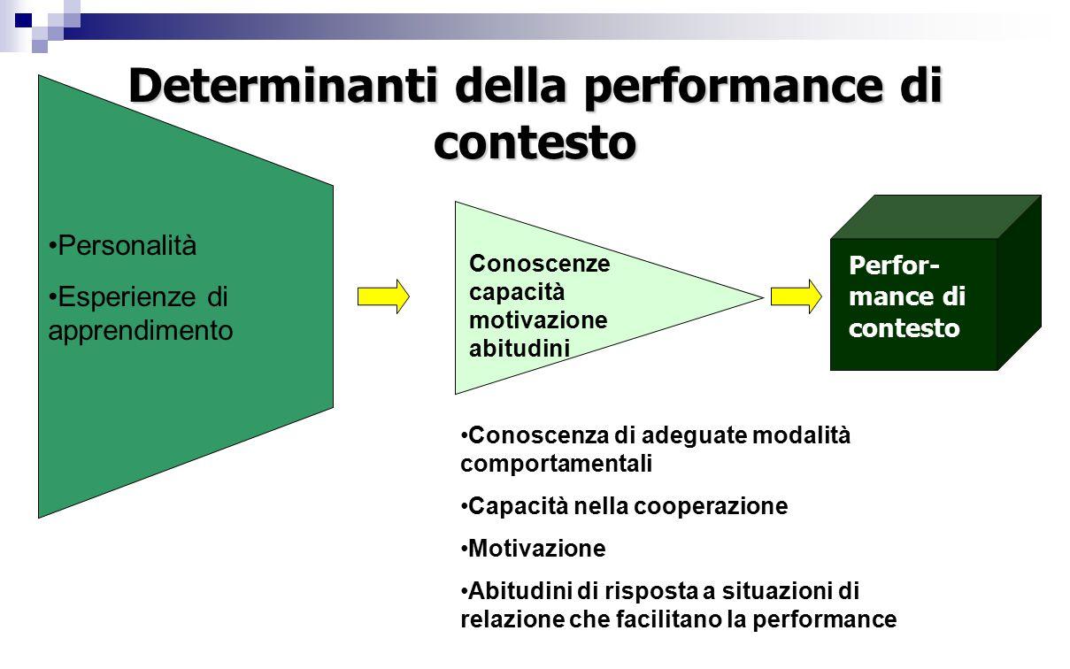 Determinanti della performance di contesto