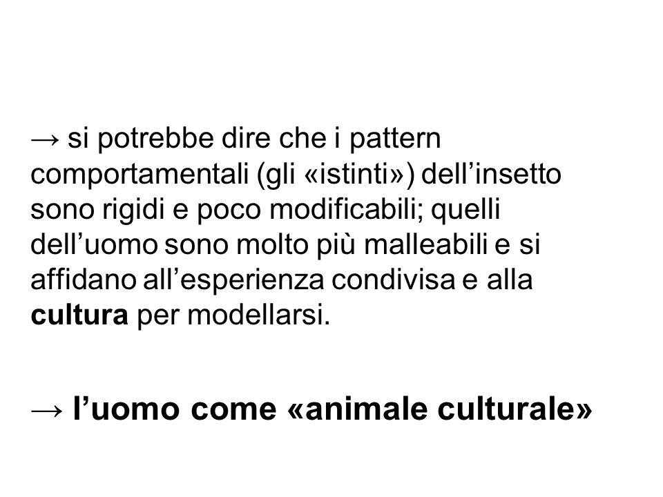 → l'uomo come «animale culturale»