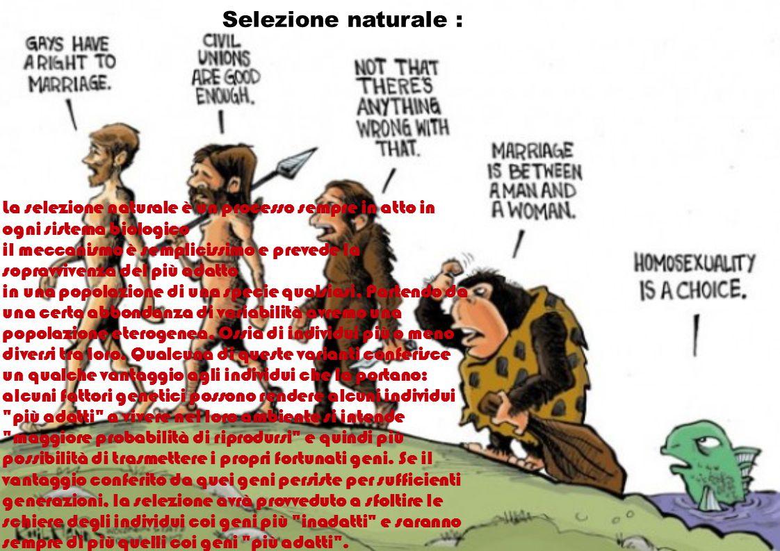 Selezione naturale : La selezione naturale è un processo sempre in atto in ogni sistema biologico.