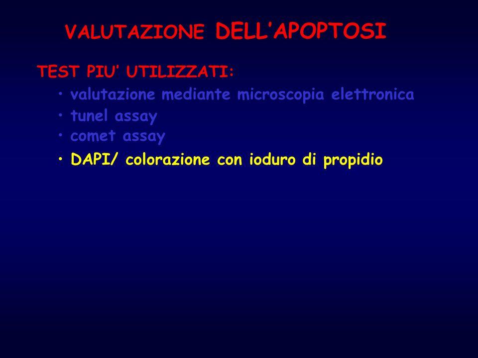 VALUTAZIONE DELL'APOPTOSI
