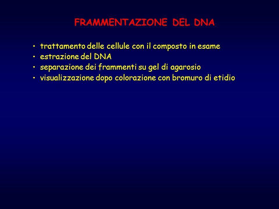FRAMMENTAZIONE DEL DNA