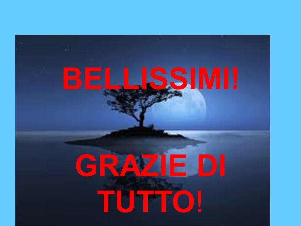 BELLISSIMI! GRAZIE DI TUTTO!