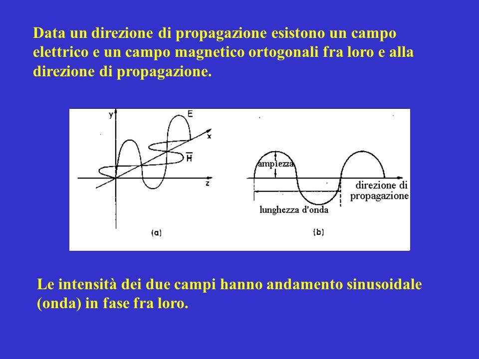 Data un direzione di propagazione esistono un campo elettrico e un campo magnetico ortogonali fra loro e alla direzione di propagazione.