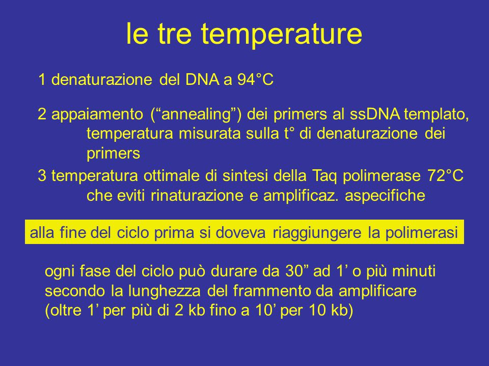 le tre temperature 1 denaturazione del DNA a 94°C
