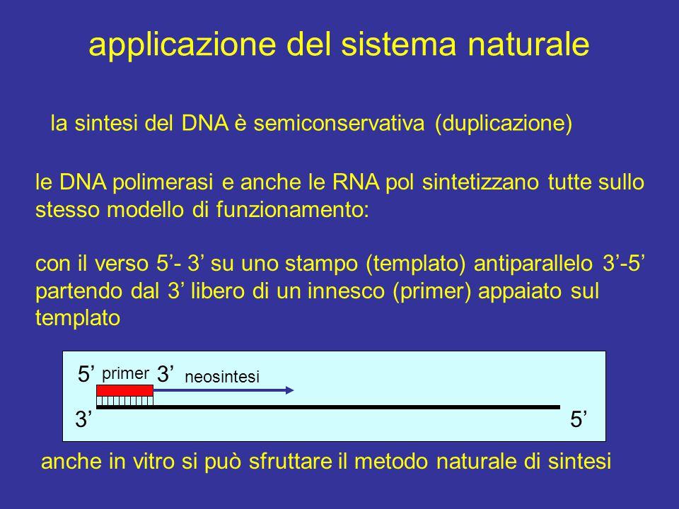 applicazione del sistema naturale