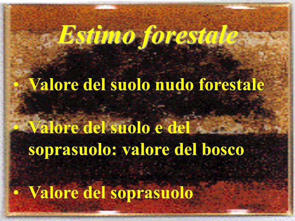 Estimo forestale Valore del suolo nudo forestale