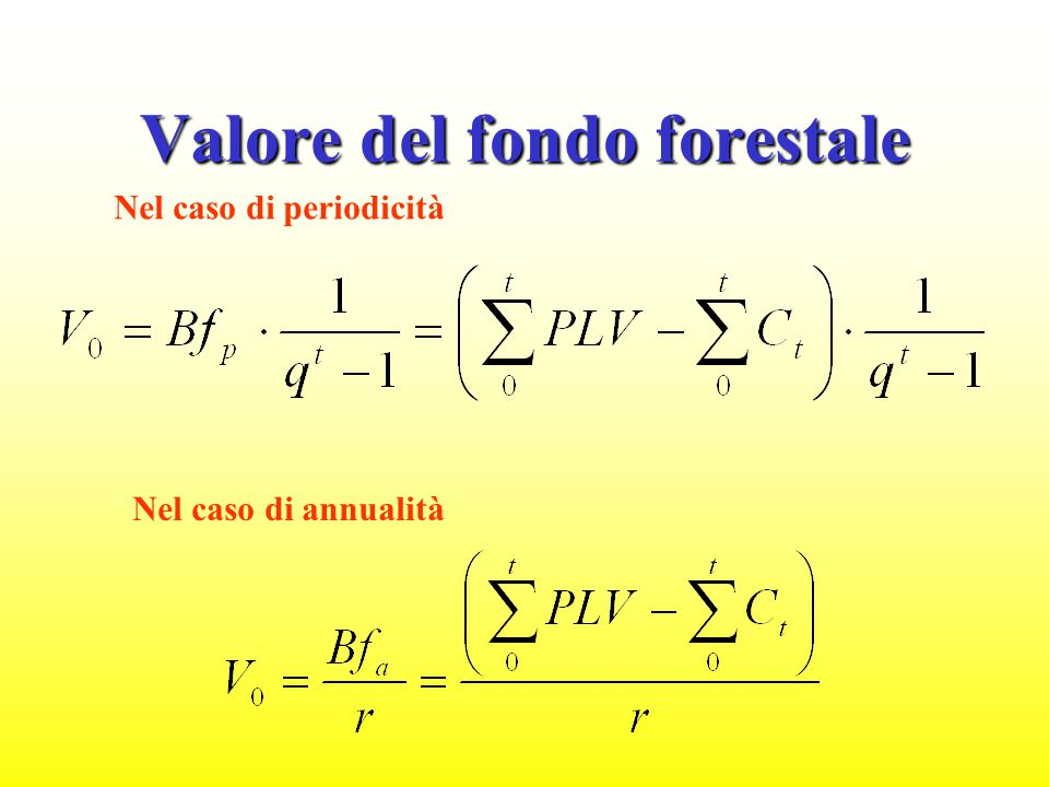 Valore del fondo forestale
