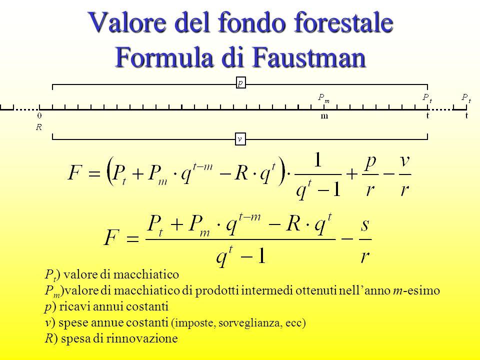 Valore del fondo forestale Formula di Faustman