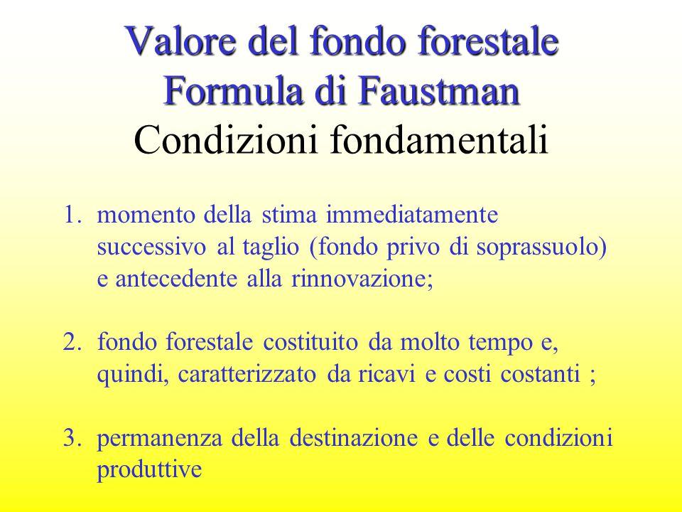 Valore del fondo forestale Formula di Faustman Condizioni fondamentali