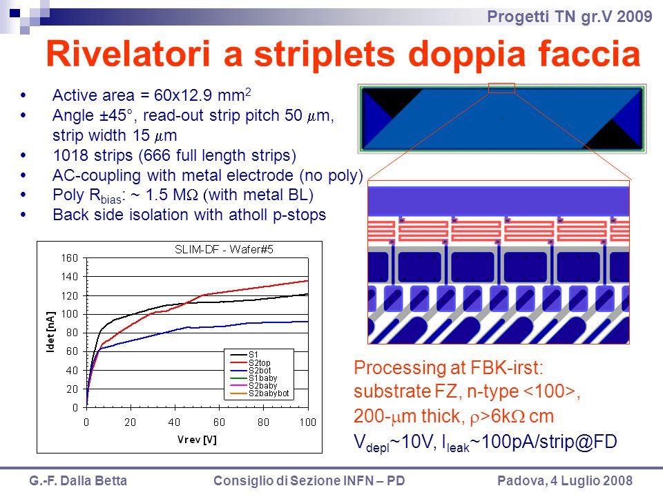Rivelatori a striplets doppia faccia
