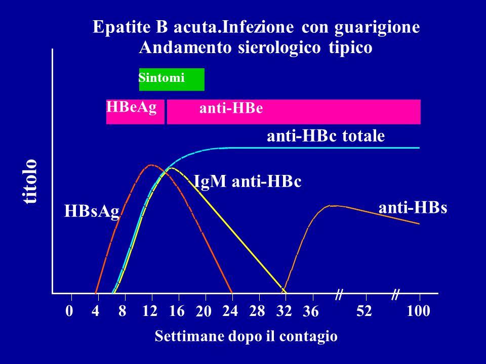 Epatite B acuta.Infezione con guarigione