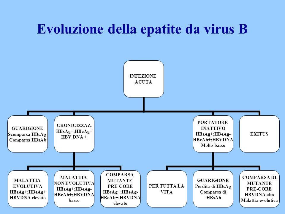 Evoluzione della epatite da virus B