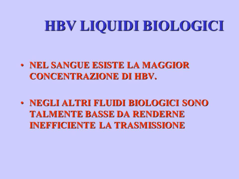 HBV LIQUIDI BIOLOGICI NEL SANGUE ESISTE LA MAGGIOR CONCENTRAZIONE DI HBV.