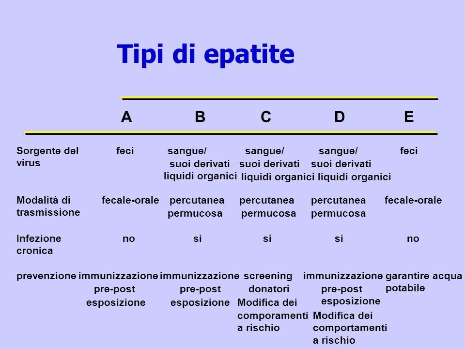 Tipi di epatite A B C D E Sorgente del virus feci sangue/ sangue/