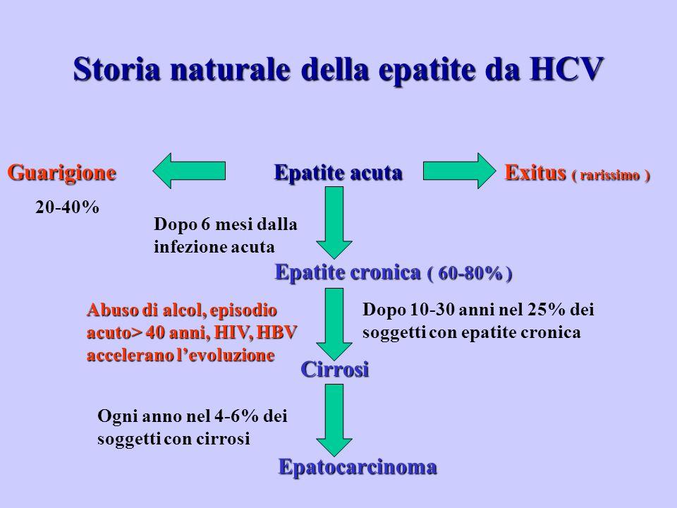 Storia naturale della epatite da HCV