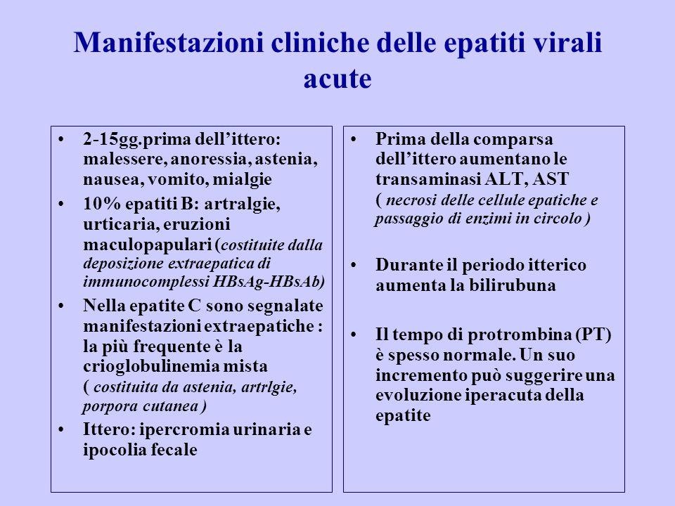 Manifestazioni cliniche delle epatiti virali acute