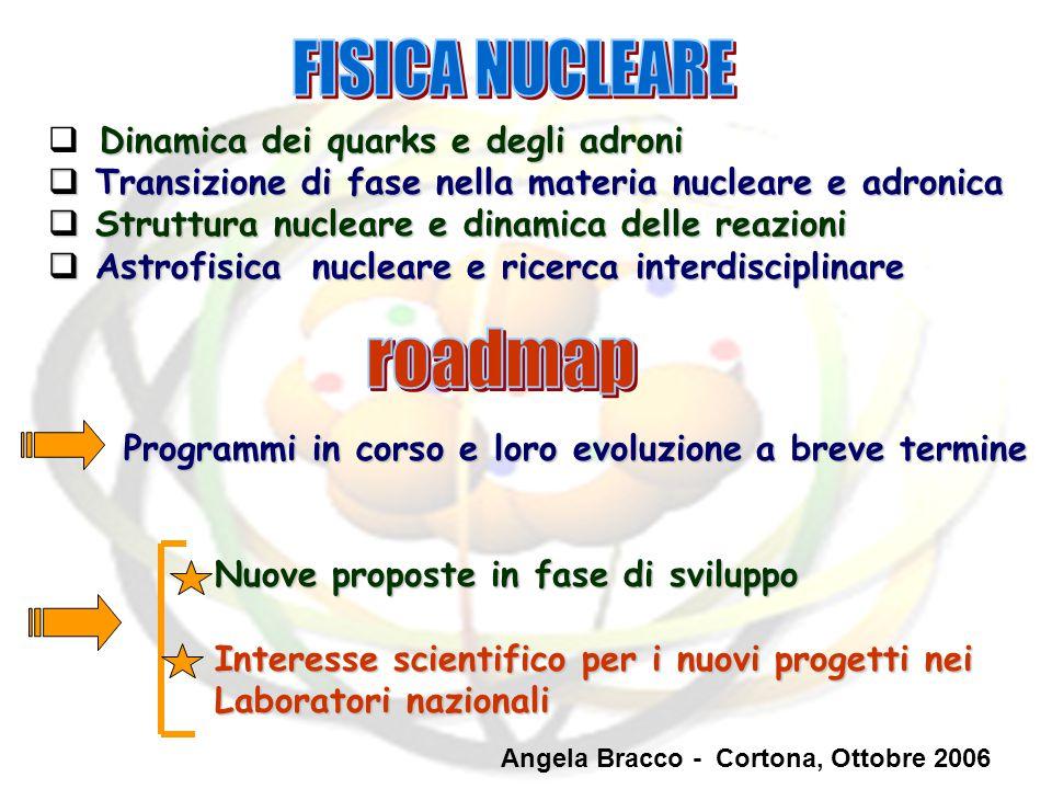 FISICA NUCLEARE roadmap Dinamica dei quarks e degli adroni