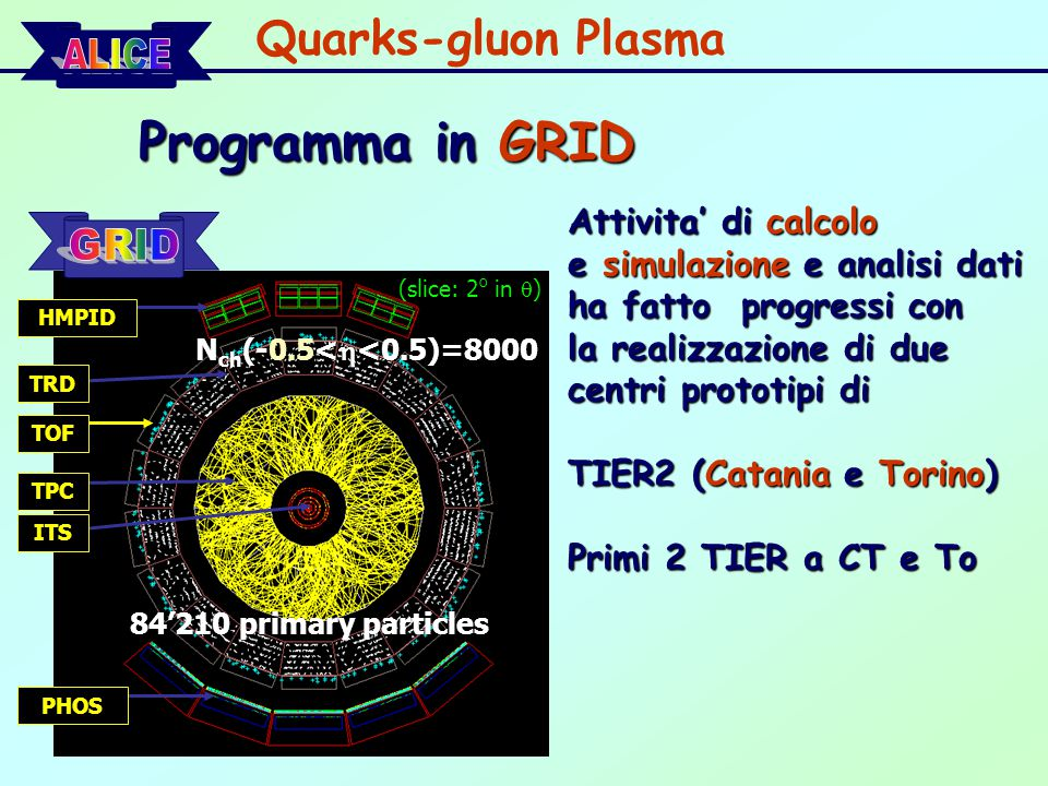 Programma in GRID Quarks-gluon Plasma Attivita' di calcolo