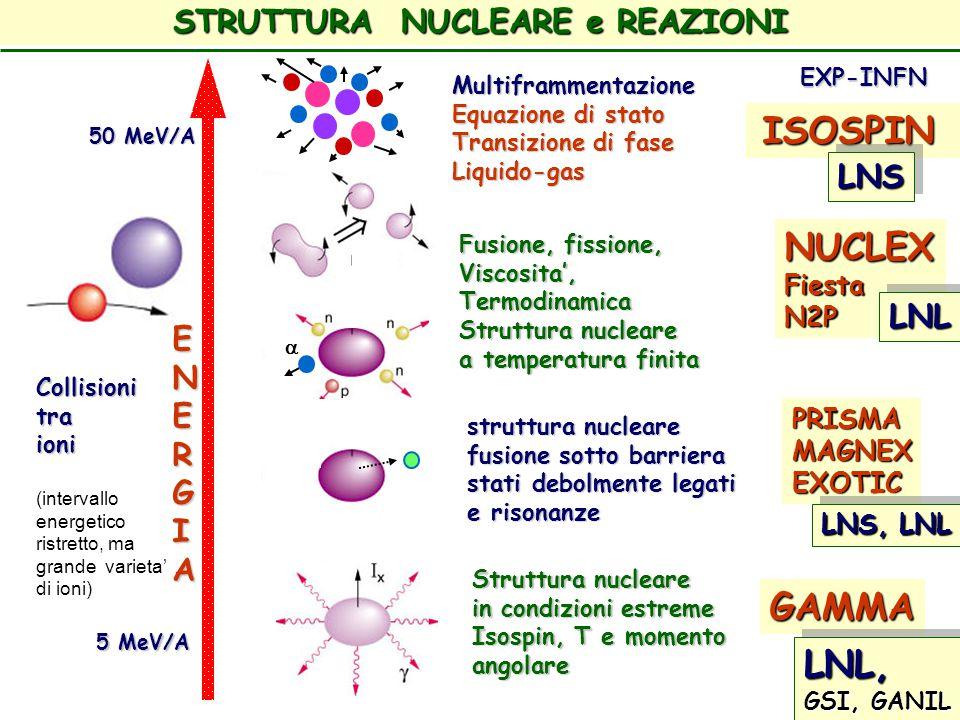 STRUTTURA NUCLEARE e REAZIONI