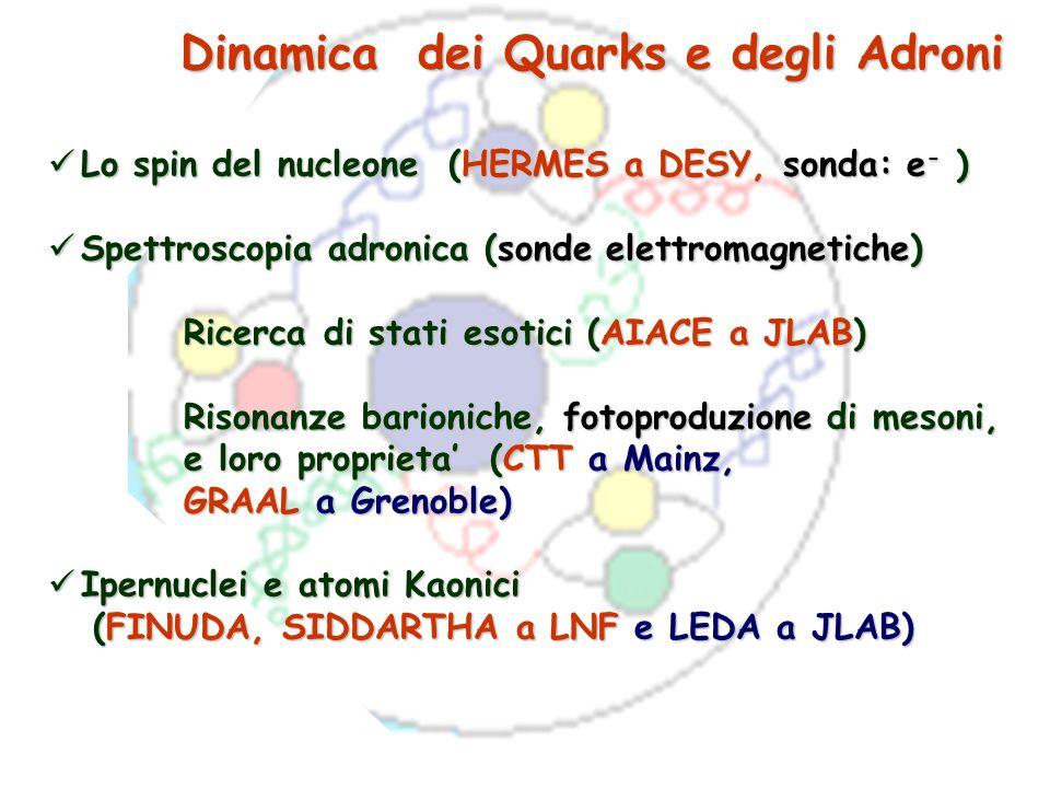 Dinamica dei Quarks e degli Adroni