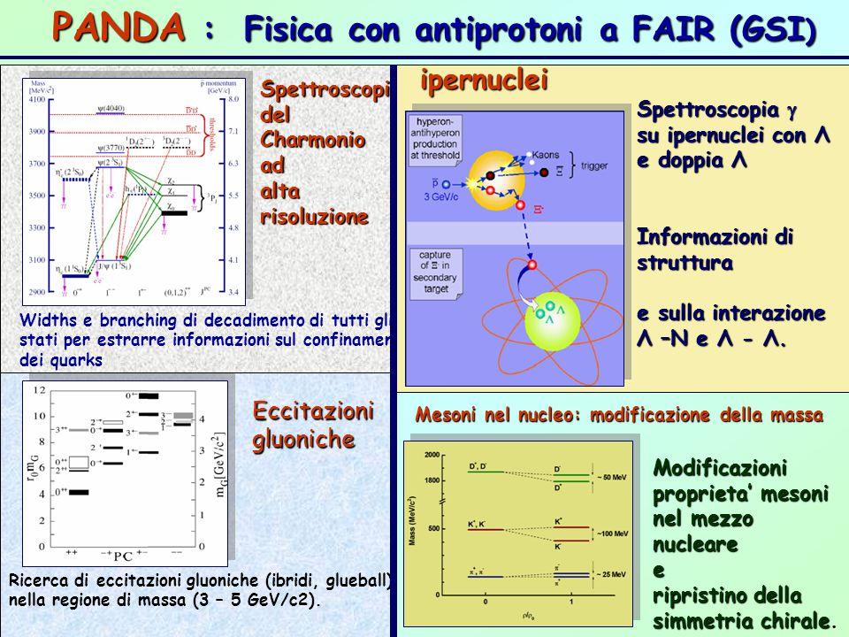 PANDA : Fisica con antiprotoni a FAIR (GSI)