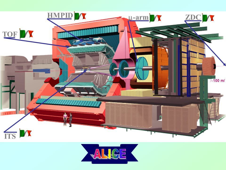 HMPID m-arm ZDC TOF /~100 m/ ITS ALICE