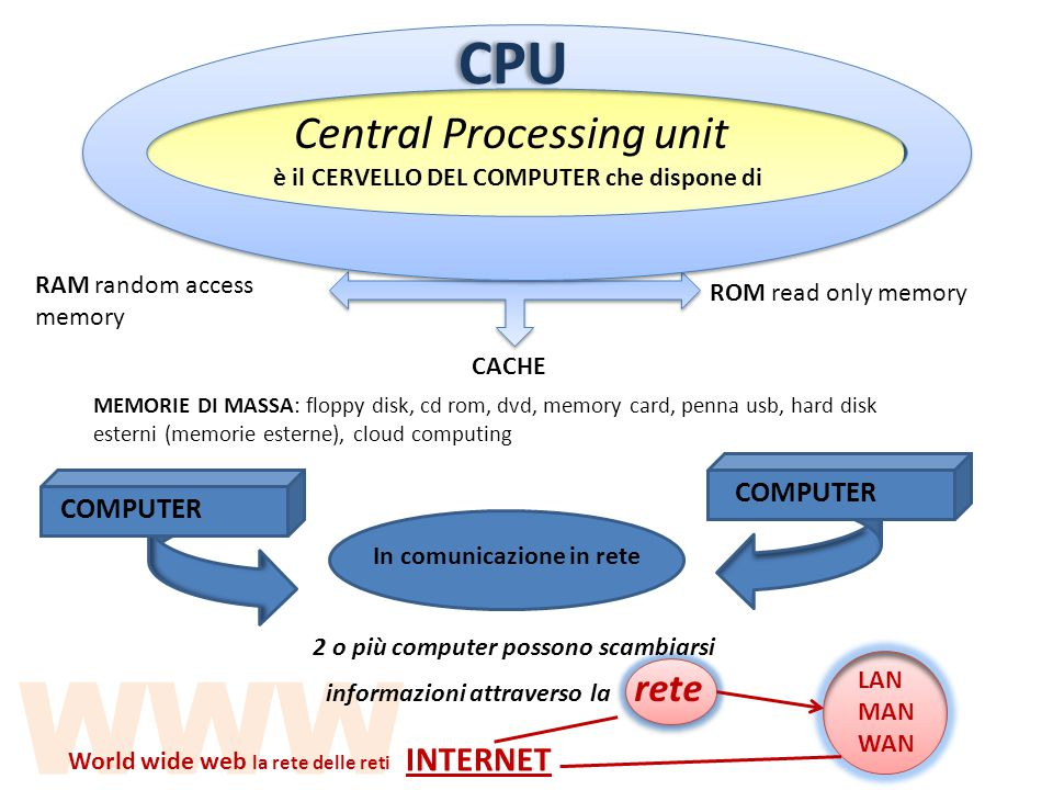 WWW CPU Central Processing unit INTERNET COMPUTER COMPUTER