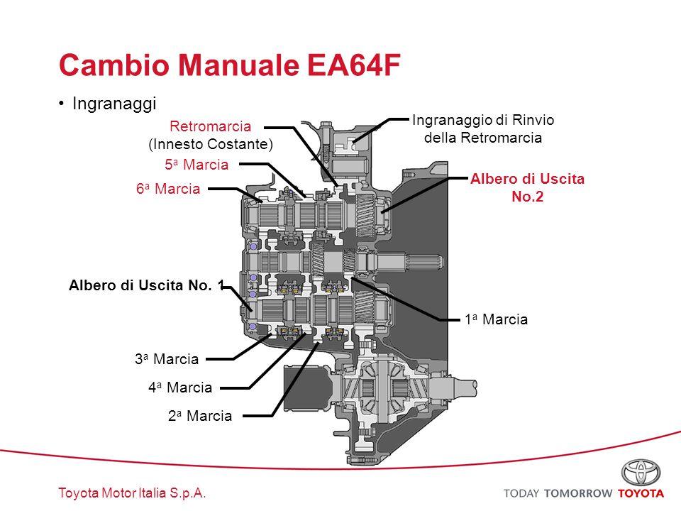 Cambio Manuale EA64F Ingranaggi
