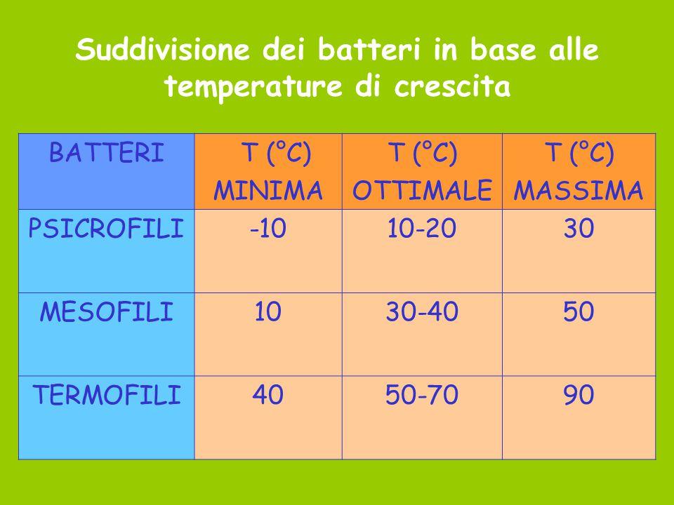 Suddivisione dei batteri in base alle temperature di crescita