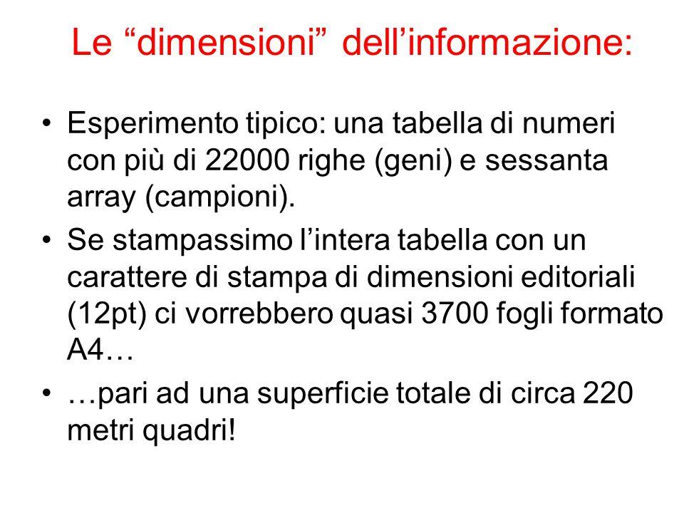Le dimensioni dell'informazione:
