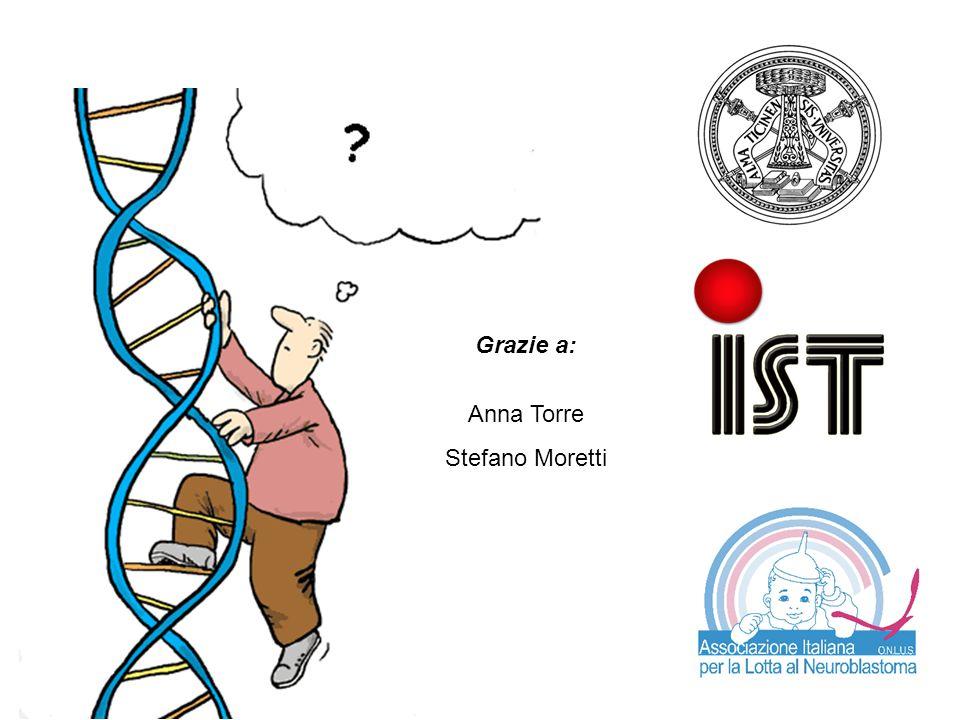 Grazie a: Anna Torre Stefano Moretti