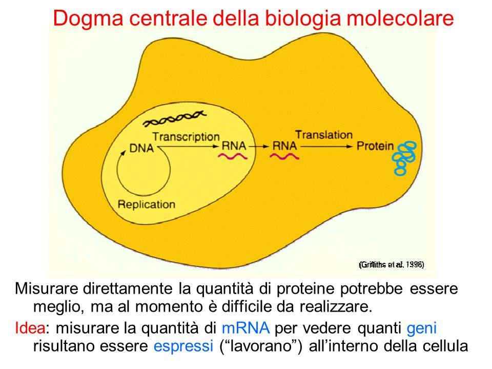 Dogma centrale della biologia molecolare