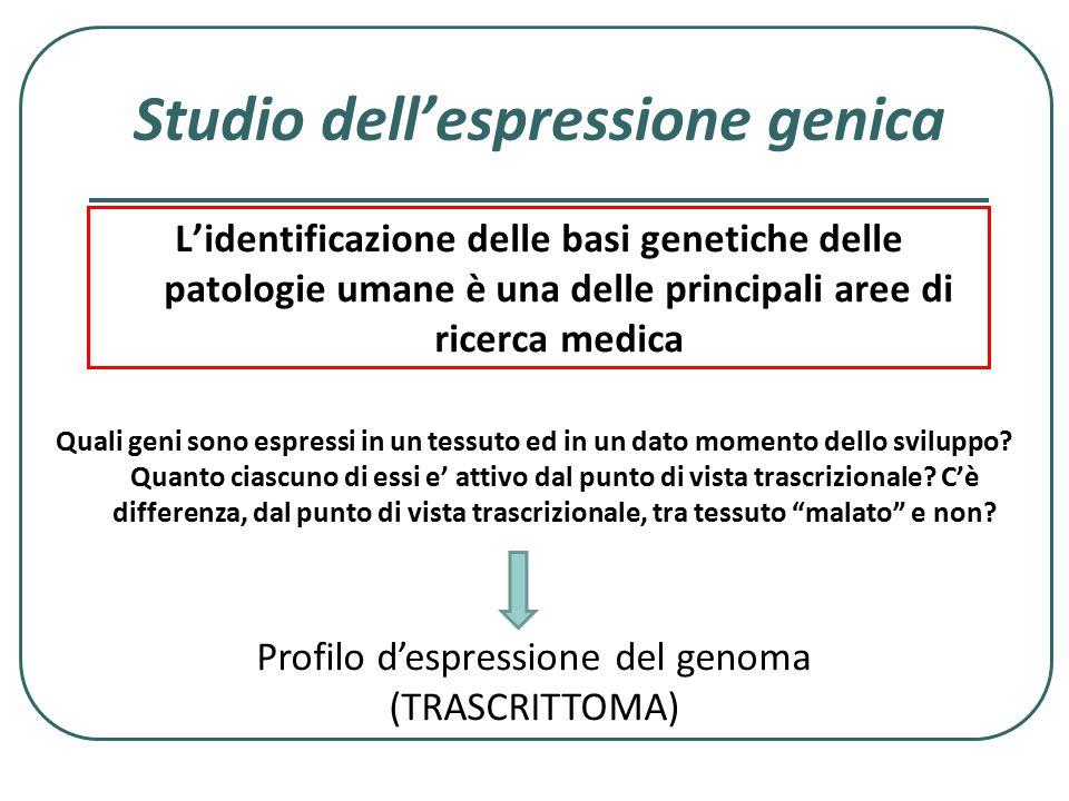 Studio dell'espressione genica