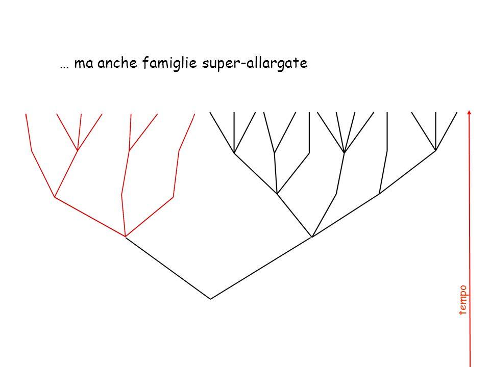 … ma anche famiglie super-allargate