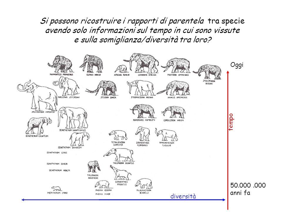 Si possono ricostruire i rapporti di parentela tra specie