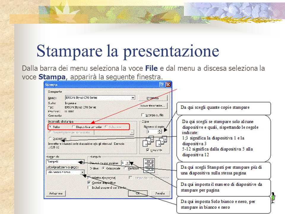 Stampare la presentazione