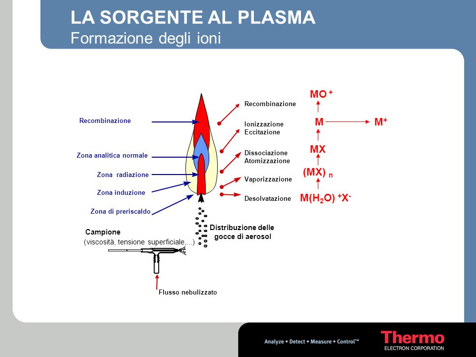 LA SORGENTE AL PLASMA Formazione degli ioni MO + M M+ MX (MX) n