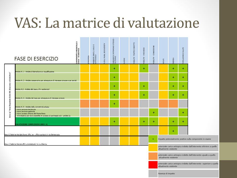 VAS: La matrice di valutazione