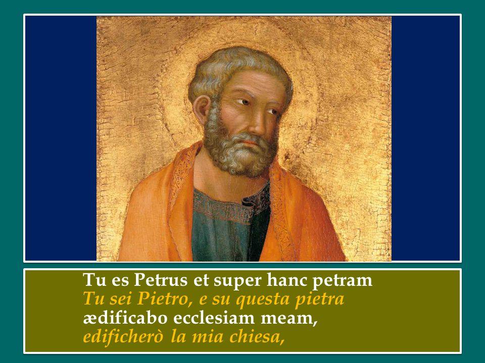 Tu es Petrus et super hanc petram Tu sei Pietro, e su questa pietra ædificabo ecclesiam meam, edificherò la mia chiesa,