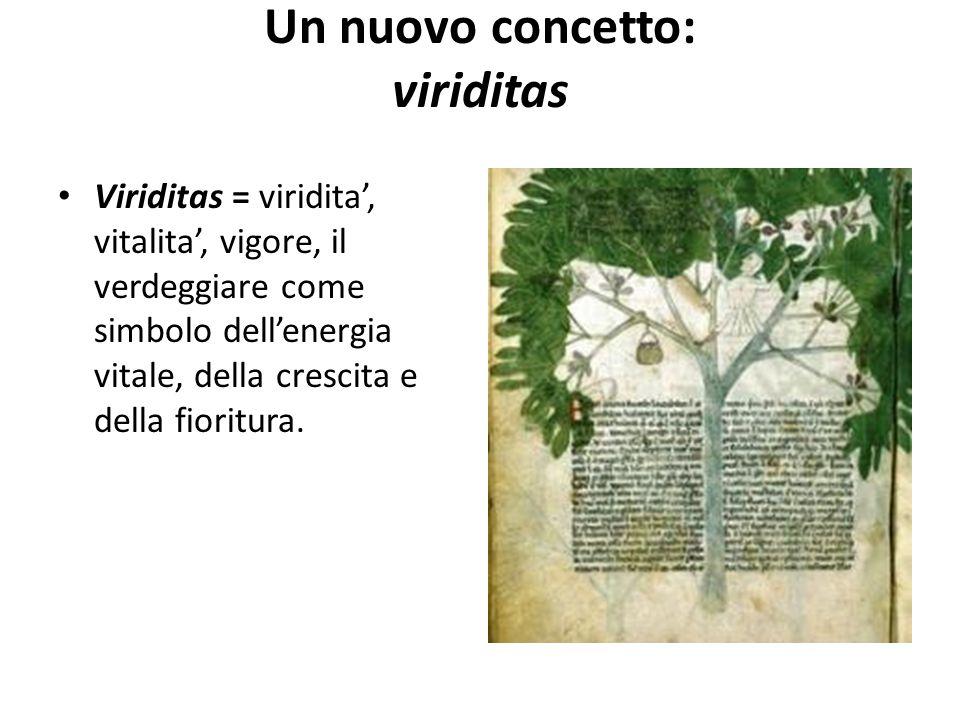 Un nuovo concetto: viriditas