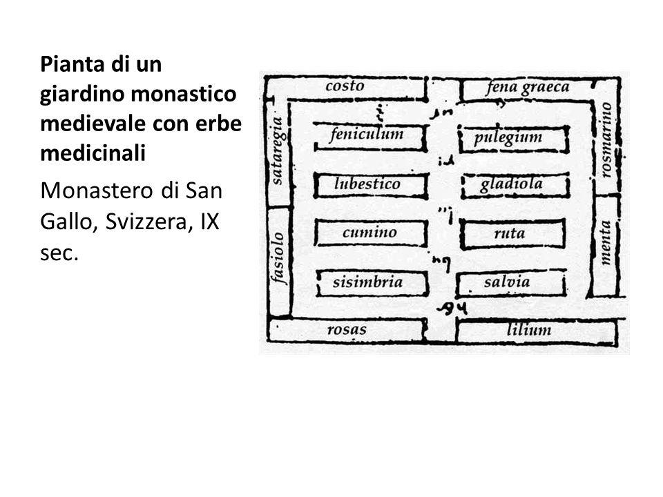 Monastero di San Gallo, Svizzera, IX sec.